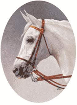 Logo konevod 2