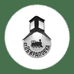 Logo zheleznodorozniy